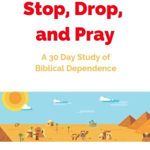 A 30 day study on Biblical dependence.